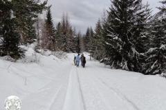 Tekking nella neve